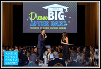 Dream Big Auction 2014
