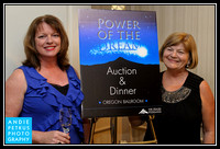 MHCC Power of the Dream Auction 2012